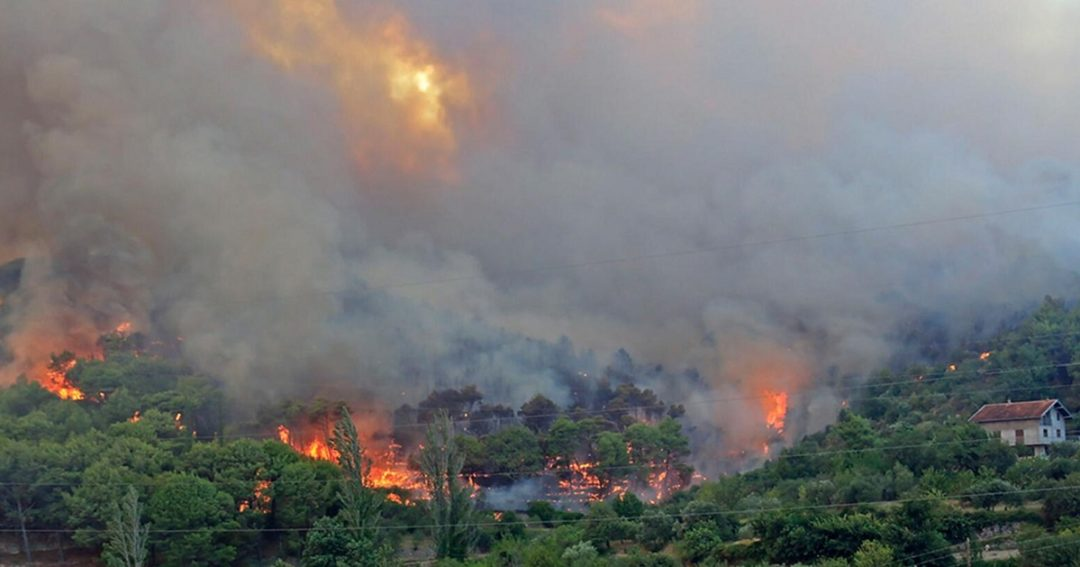 Wildfires2