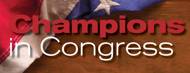 Champions in Congress background