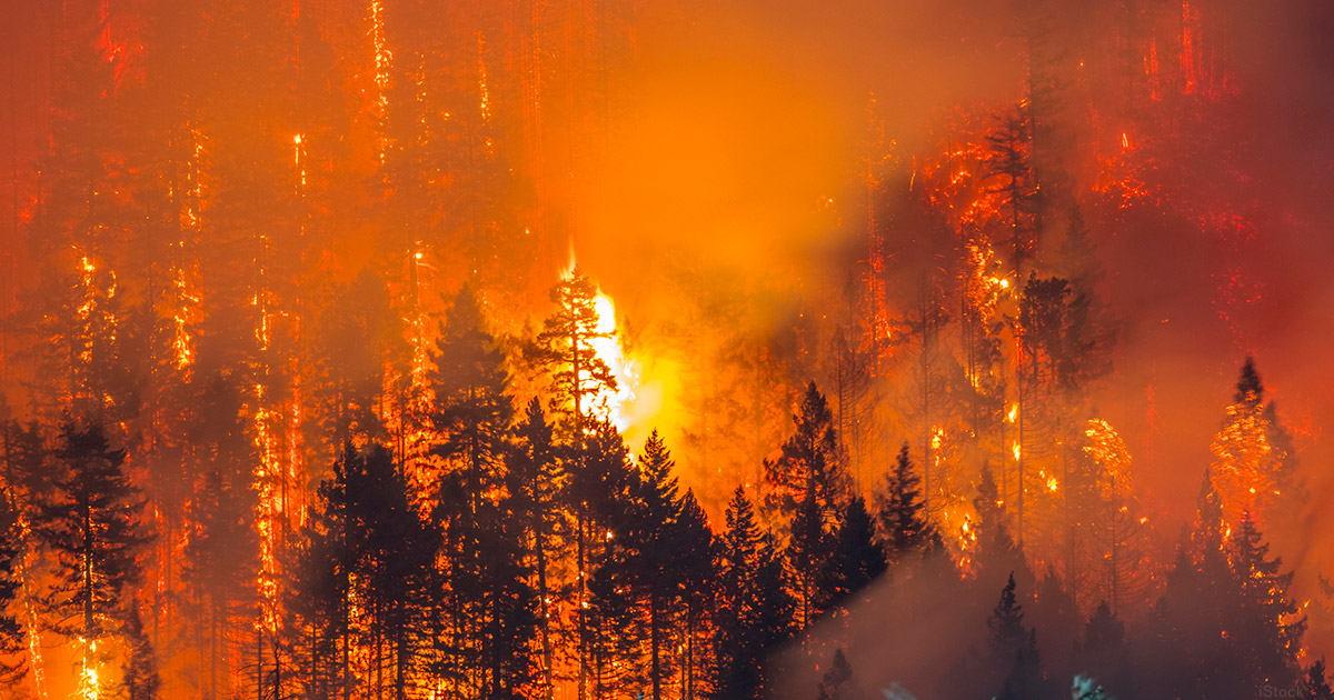 CUAid partnering with Calif. credit unions for wildfire relief