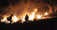 California CUs once again battle wildfires