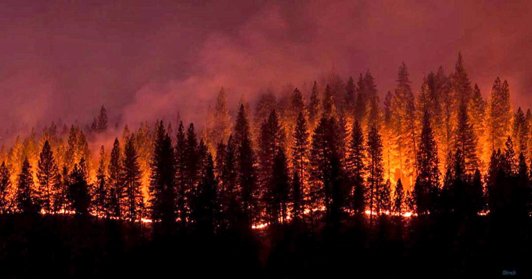 As West Coast burns, CUs continue service