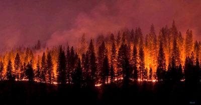 2020 09 wildfires 118386